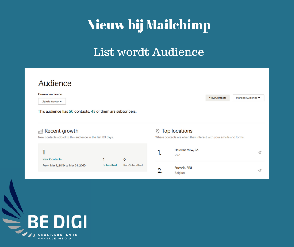 Mailchimp audience